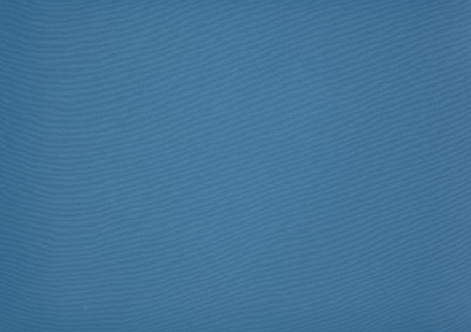 Bleuet 8204