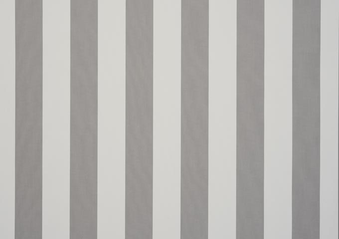 Gris blanc 8907